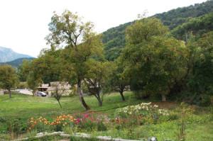 20140910_04 La-Palud-de-Castellane_7489